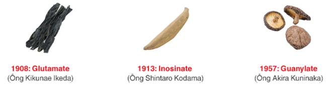 Ba thành phần mang lại vị umami trong thực phẩm là glutamate, inosinate và guanylate