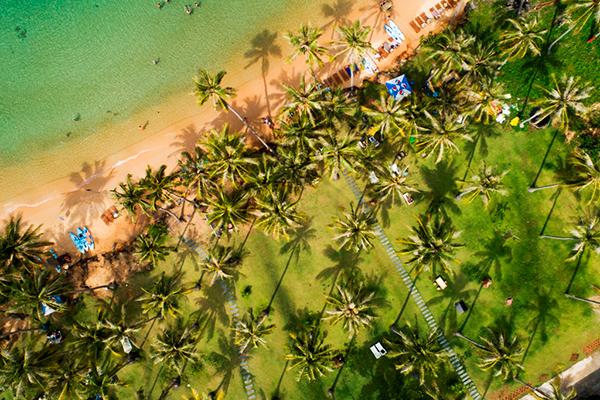 Vui Tết tưng bừng tại Sun World Hon Thom Nature Park chỉ với 200.000 đồng
