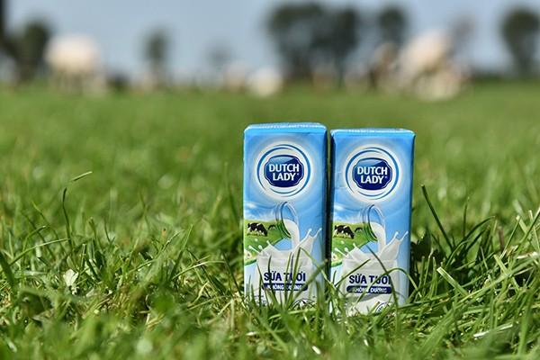 Độ an toàn của sữa tươi Cô Gái Hà Lan tăng từ 10 lên 11 lần so với chuẩn Việt Nam ảnh 2