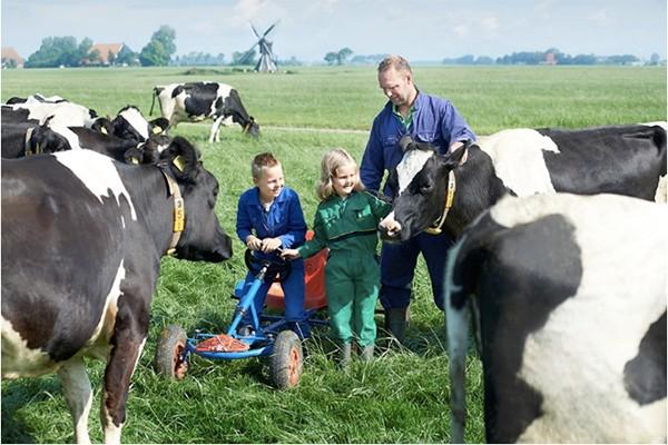 """Nông dân """"chuẩn Hà Lan"""" có cách chăm sóc bò đặc biệt như con cái trong gia đình"""