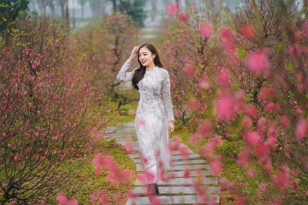 1.000 cây đào cùng lúc nở rộ, trăm loài hoa xuân khoe sắ
