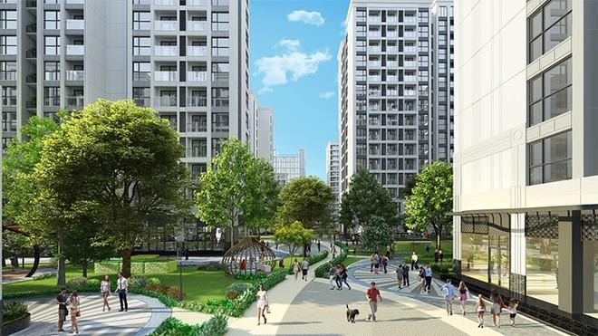 Người dân đô thị cần những không gian sống thoáng đãng, nhiều cây xanh để duy trì thói quen tập thể dục mỗi ngày, nâng cao sức khỏe thể chất và tinh thần