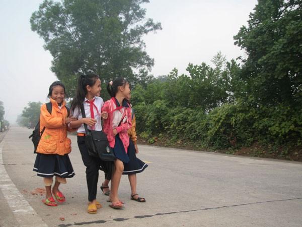 Đất Quảng Nam chưa mưa đã thấm... ảnh 1