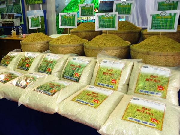 """Gạo Việt vẫn """"vô danh"""" dù xuất khẩu thứ ba thế giới ảnh 1"""