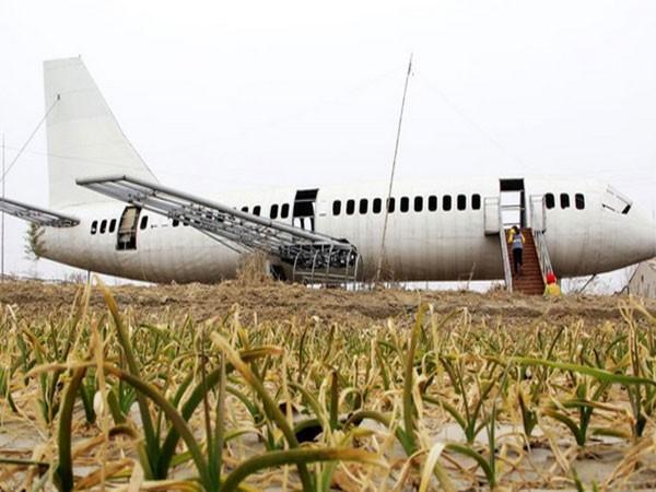 Lão nông chế mô hình Boeing 737 ảnh 1
