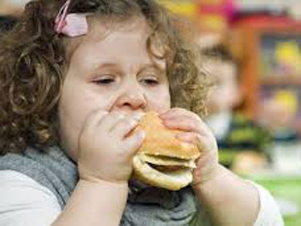 Trẻ béo phì dễ tăng huyết áp ảnh 1