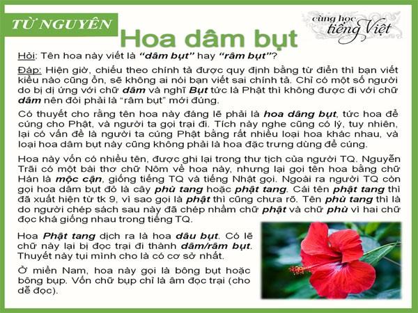 """Sức hút của """"Cùng học tiếng Việt"""" trên facebook ảnh 2"""