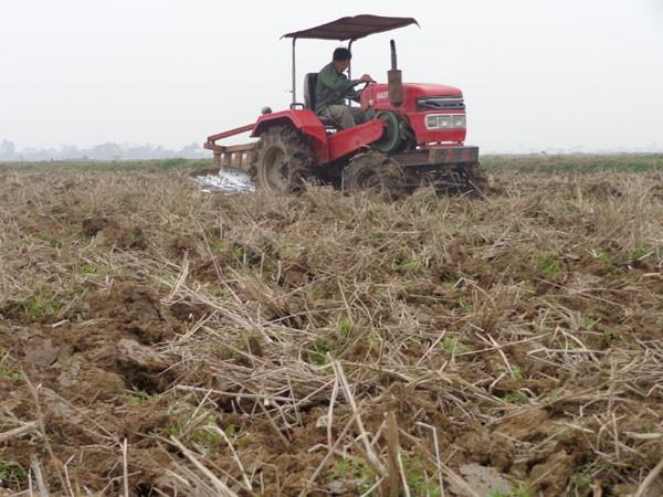 Nhập khẩu đất: Tránh để lại hậu quả ảnh 1