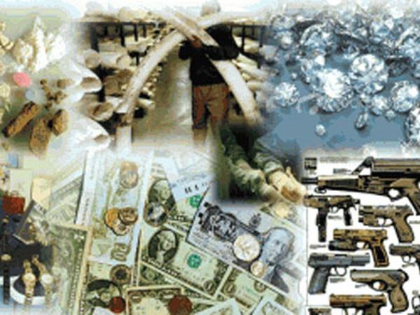 Mối họa từ tội phạm xuyên quốc gia ảnh 1
