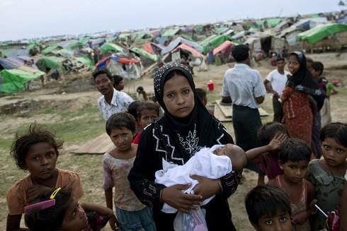 Người Hồi giáo Rohingya tại Myanmar đang phải hứng chịu những ngày tháng cơ cực