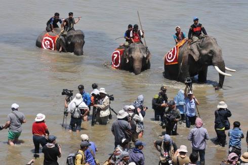 Bất chấp những ngăn cản của BTC, các tay máy vẫn áp sát để chụp ảnh về voi tại Lễ hội đua voi năm 2017