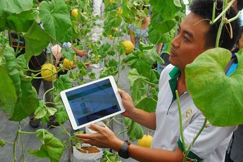 Chính sách hỗ trợ nông dân khởi nghiệp cần phải thực chất hơn nữa