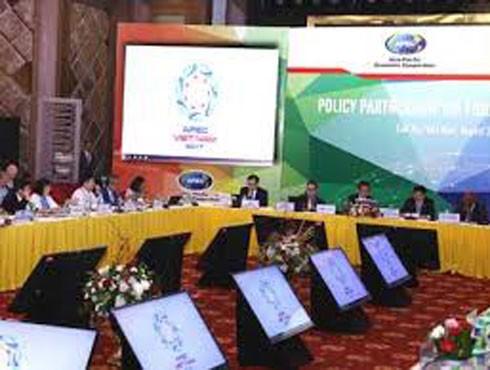 Việt Nam trên cương vị chủ nhà đã tổ chức nhiều hội nghị, hội thảo về các chủ đề ưu tiên nghị sự cho Tuần lễ Cấp cao APEC 2017