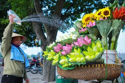 Thú chơi hoa, cây cảnh cũng có nhiều khác lạ nhưng nếu chơi hoa truyền thống thì cơ bản người ta vẫn tuân theo quy ước và kiểu chơi của người Thăng Long xưa