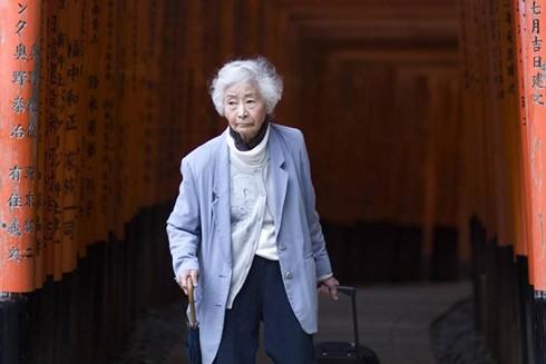 Ước tính có khoảng 17 triệu người Nhật Bản từ 65 tuổi trở lên có bằng lái xe ô tô