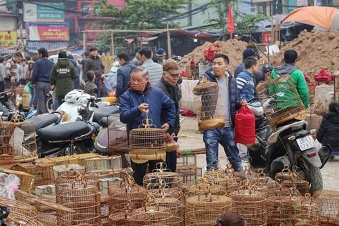 Thanh âm phố phường Hà Nội
