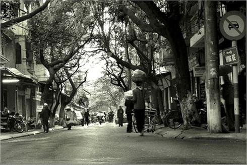 Chợ Hàng Bè chính thức bị dẹp bỏ vào năm 2010 nhưng từ phố Gia Ngư thông sang Cầu Gỗ, Đinh Liệt người Hà Nội vẫn quen gọi khu vực ấy là chợ Hàng Bè