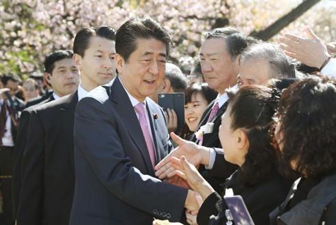 Thủ tướng Nhật Bản gặp rắc rối mới với danh sách khách mời dự tiệc mừng hoa anh đào hàng năm