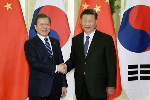 Tổng thống Hàn Quốc Moon Jae-in (trái) và Chủ tịch Trung Quốc Tập Cận Bình