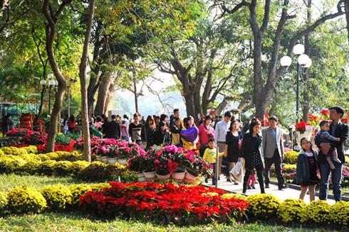 Xuân là mùa hoa tầm xuân đẹp nhất, xuân khiến con người muốn đi tìm những con đường hoa có thực