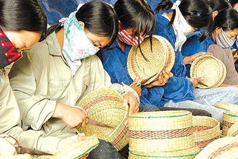 Doanh nghiệp nhỏ và siêu nhỏ chiếm tới hơn 90% tổng số doanh nghiệp tại Việt Nam