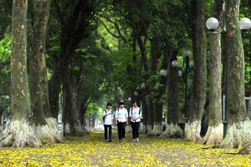 Rất nhiều người mong ước một cơn mưa khi nhiệt độ trên đường phố Hà Nội đo được trên 60 độ C