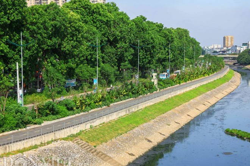 Đường Láng là một trong những tuyến đường mẫu trong việc thiết kế, trồng, chăm sóc hệ thống cây xanh
