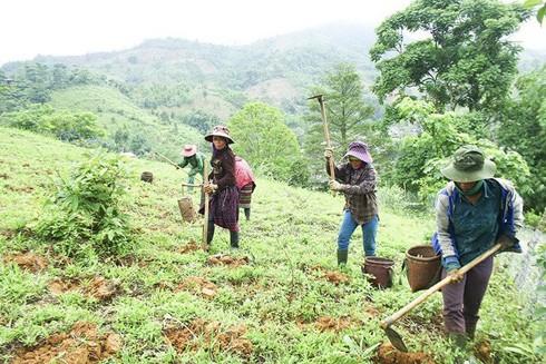 Hà Nội đưa ra tiêu chí xác định hộ dân tộc miền núi thiếu đất sản xuất