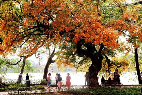 Mùa thu Hà Nội mang theo hương vị ngọt ngào của mùa đẹp nhất trong năm