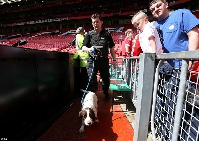 Chó nghiệp vụ được điều đến để tìm kiếm bom mìn