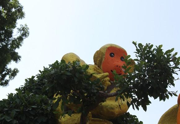 """Ngắm """"đàn khỉ"""" siêu ngộ nghĩnh ở đường hoa Hùng Vương ảnh 4"""