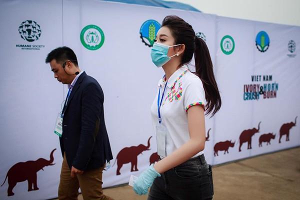 Á hậu Huyền My kêu gọi bảo vệ động vật hoang dã