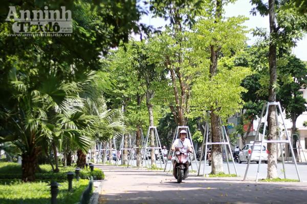 Phản cảm hình ảnh phóng xe máy trên vỉa hè khu vực quanh hồ Hoàn Kiếm ảnh 3