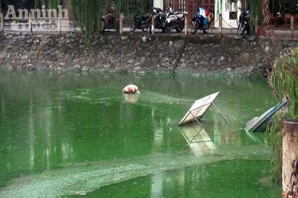 Hồ Văn Quán: Tảo nổi váng dày đặc, bốc mùi ảnh 4
