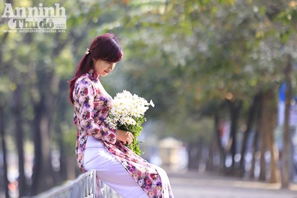 Những thiếu nữ Hà thành cũng tranh thủ dịp này, diện áo dài, váy vóc, tạo dáng bên cúc họa mi.