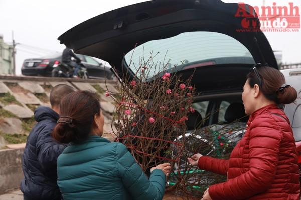 Nhiều người dân thủ đô đã đến chợ Quảng Bá lựa chọn mua về những cành đào