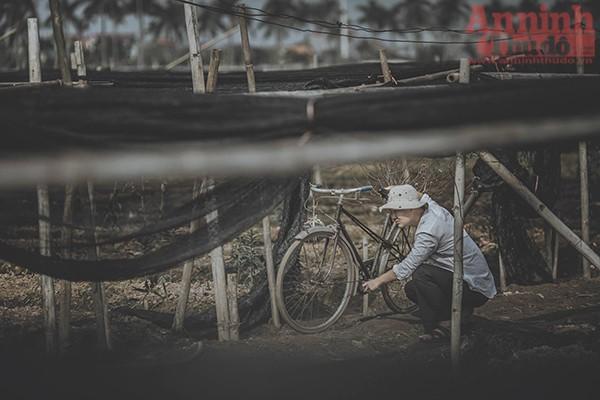Với bối cảnh làng quê nghèo khó, tác giả nói về một chàng trai đi làm ăn ở phương xa. Người con về quê thăm mẹ trên một chiếc xe đạp cũ...