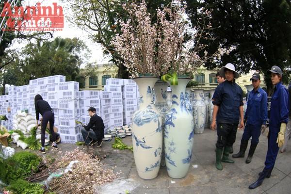 Trước đó, 150 cây hoa được vận chuyển từ Nhật Bản về Việt Nam theo đường biển và 7.000 cành hoa anh đào được Hãng hàng không Vietnam Airline hỗ trợ đưa về sân bay Nội Bài trong sáng nay 9-3.