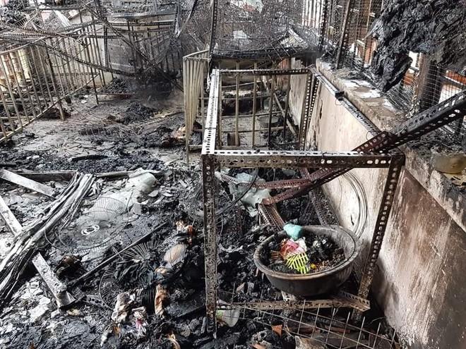 Cháy nhà nuôi chó ở Hà Nội ảnh 2