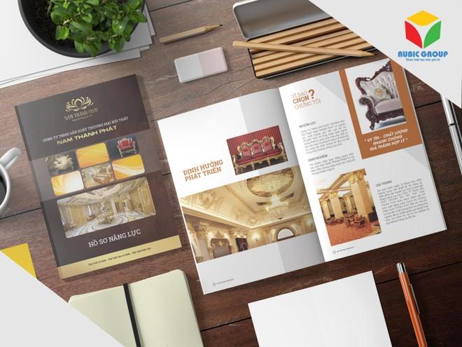 Thiết kế Hồ sơ năng lực (Profile) tạo sức mạnh cho doanh nghiệp ảnh 2