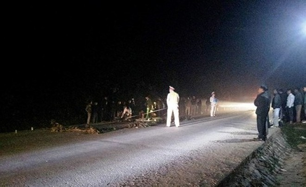 Tìm chiếc xe tải gây tai nạn khiến chồng tử vong, vợ nguy kịch ảnh 1