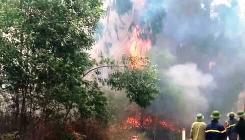 Truy tặng Huân chương Dũng cảm cho người phụ nữ tử vong khi tiếp nước chữa cháy rừng ảnh 1