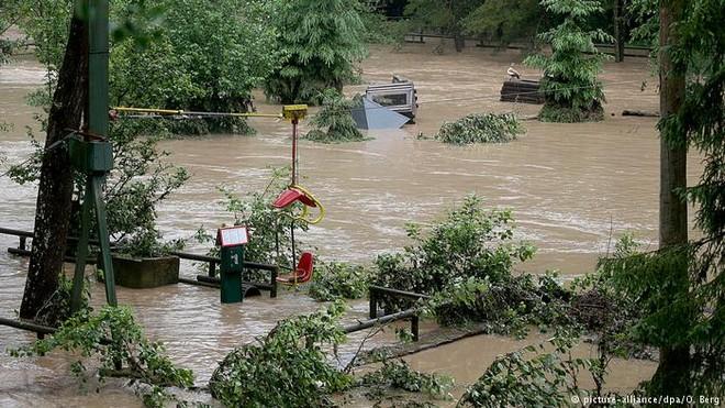 Các khu vực lớn của vườn thú Eifel bị ngập sau một cơn giông