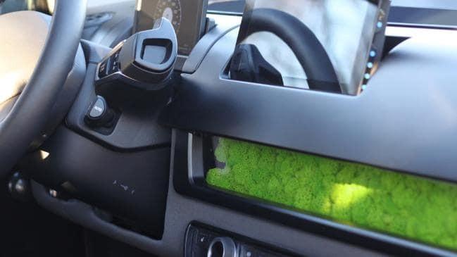 Sion sử dụng rêu để lọc không khí.