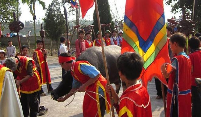 Bộ VH-TT&DL đề nghị UBND tỉnh Phú Thọ nghiên cứu xây dựng Đề án đổi mới hình thức tổ chức lễ hội Cầu trâu xã Hương Nha và xã Xuân Quang, huyện Tam Nông