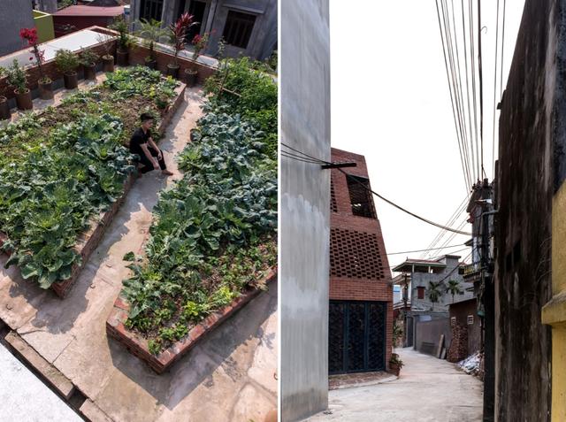 Những góc sân, khoảng vườn của ngôi nhà