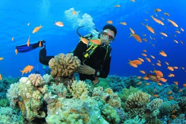 Nhiều du khách Việt chọn biển là điểm du lịch trong tháng hè
