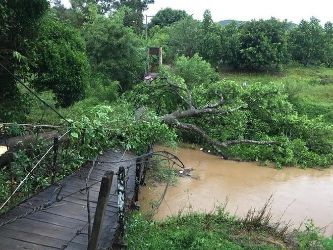 Cây cầu nối thôn 1 (xã Đa M'ri) với thị trấn Đạ M'ri đã bị lốc xoáy làm sập