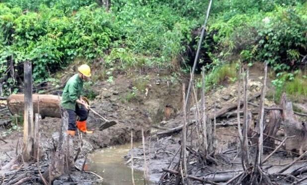 Người dân phải vét mương để dẫn nước cứu cây trồng