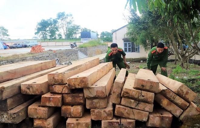 Số gỗ do Minh và đồng phạm khai thác trái phép bị công an thu giữ